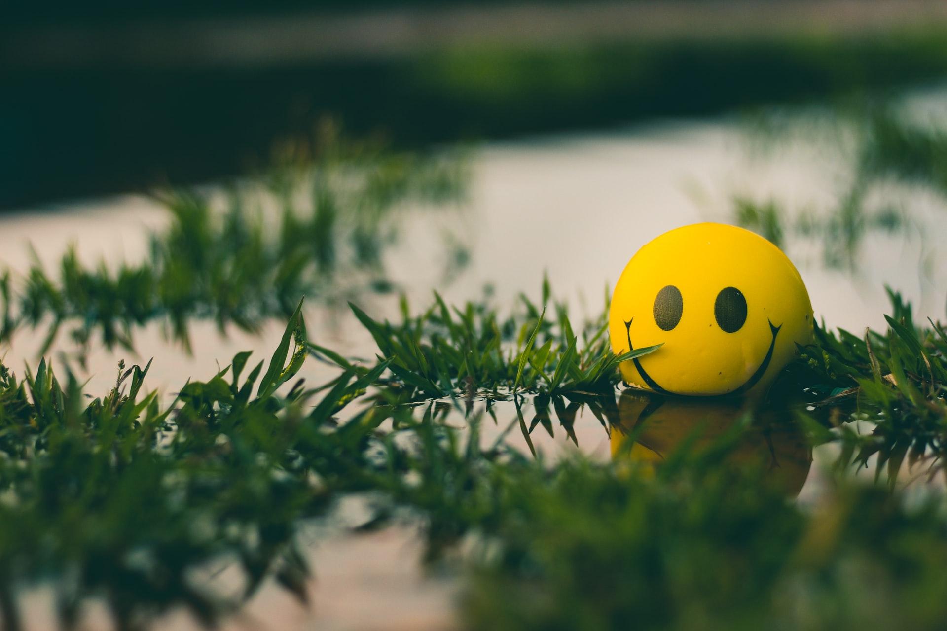 8 Langkah untuk Menjalani Hidup yang Lebih Bahagia 5