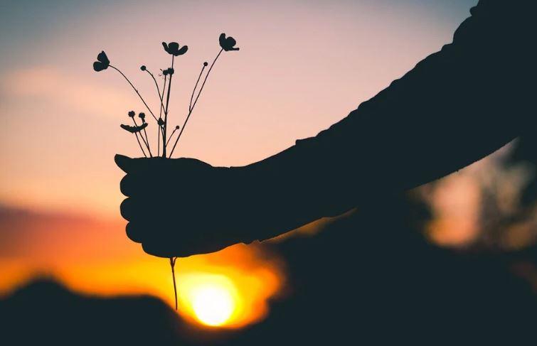 Cerpen - Lelaki Pecinta Bunga 1