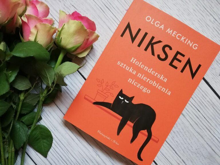 Niksen, Buku Tentang Cara Hidup Bahagia Tanpa Melakukan Apa-apa 1
