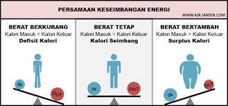 Keseimbangan energi (sumber : ask-jansen.com)