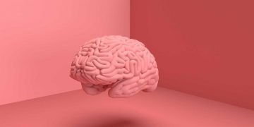 Bagian-Bagian Dan Penyebab Kerusakan Pada Otak Manusia 8