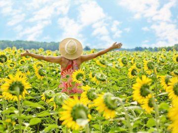 Kebahagian Yang Paling Dinilai Orang Dalam Hidup 8