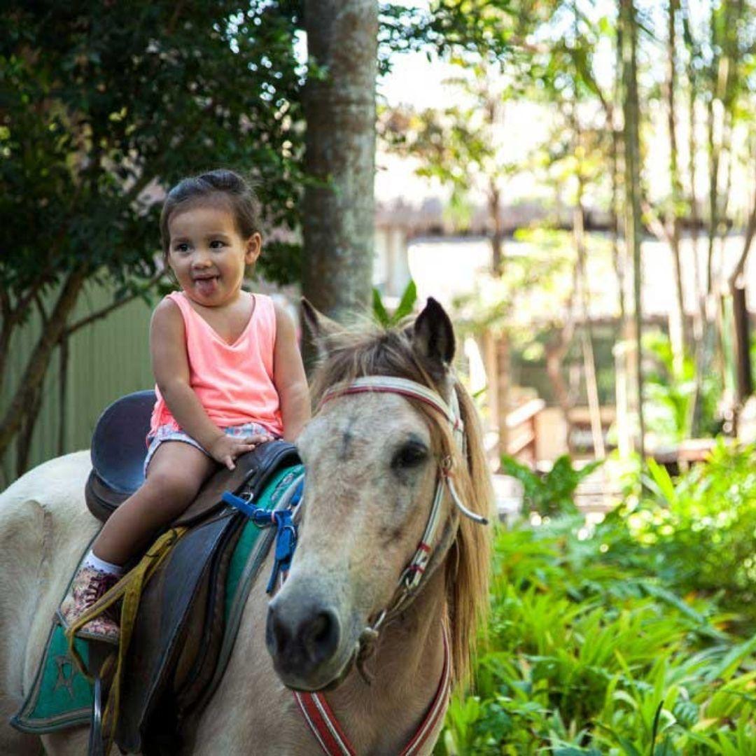 Foto: Bali Zoo