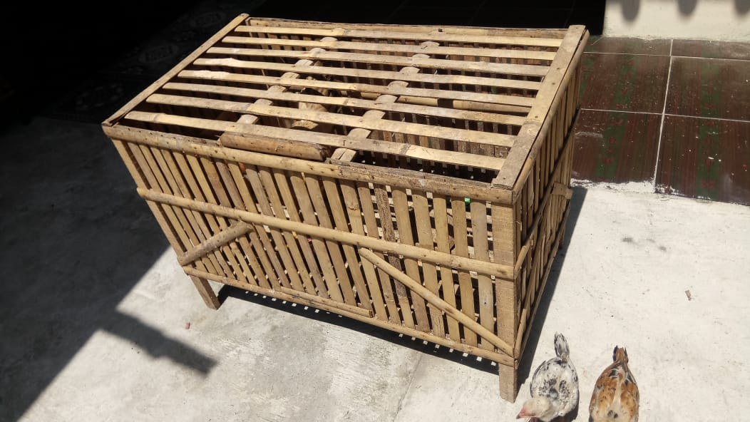 kandang ayam yang sudah jadi (sumber gambar : dok. pribadi)