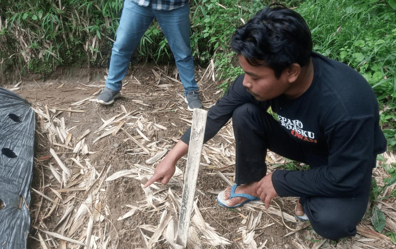 Fenomena Macan Tutul di Lereng Gunung Merapi 3