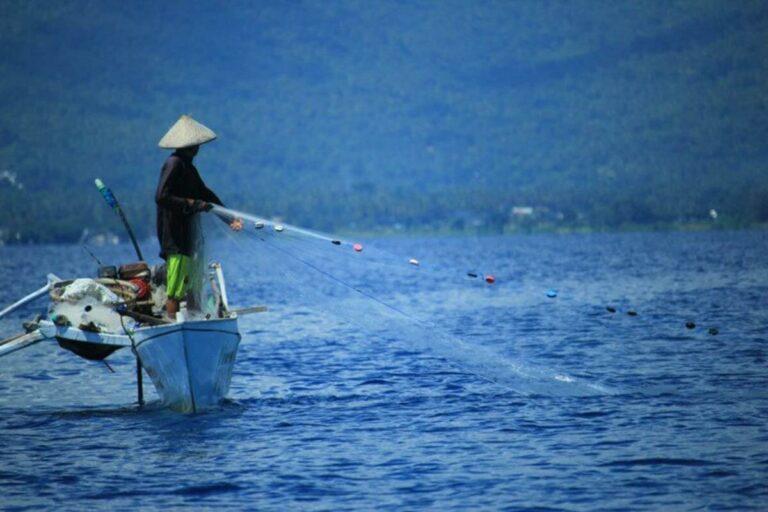 6 Jenis Ikan Laut Yang Sering ditemui Nelayan Indonesia 1