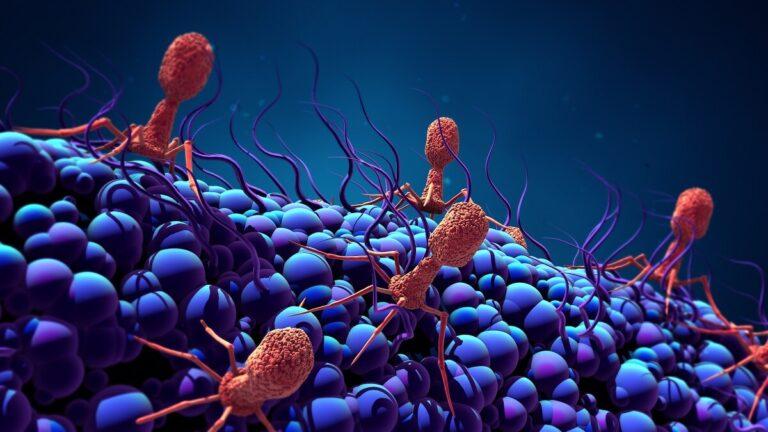 Apa Sih perbedaan Virus, Bakteri, & Parasit ? Yuk Dilihat 1