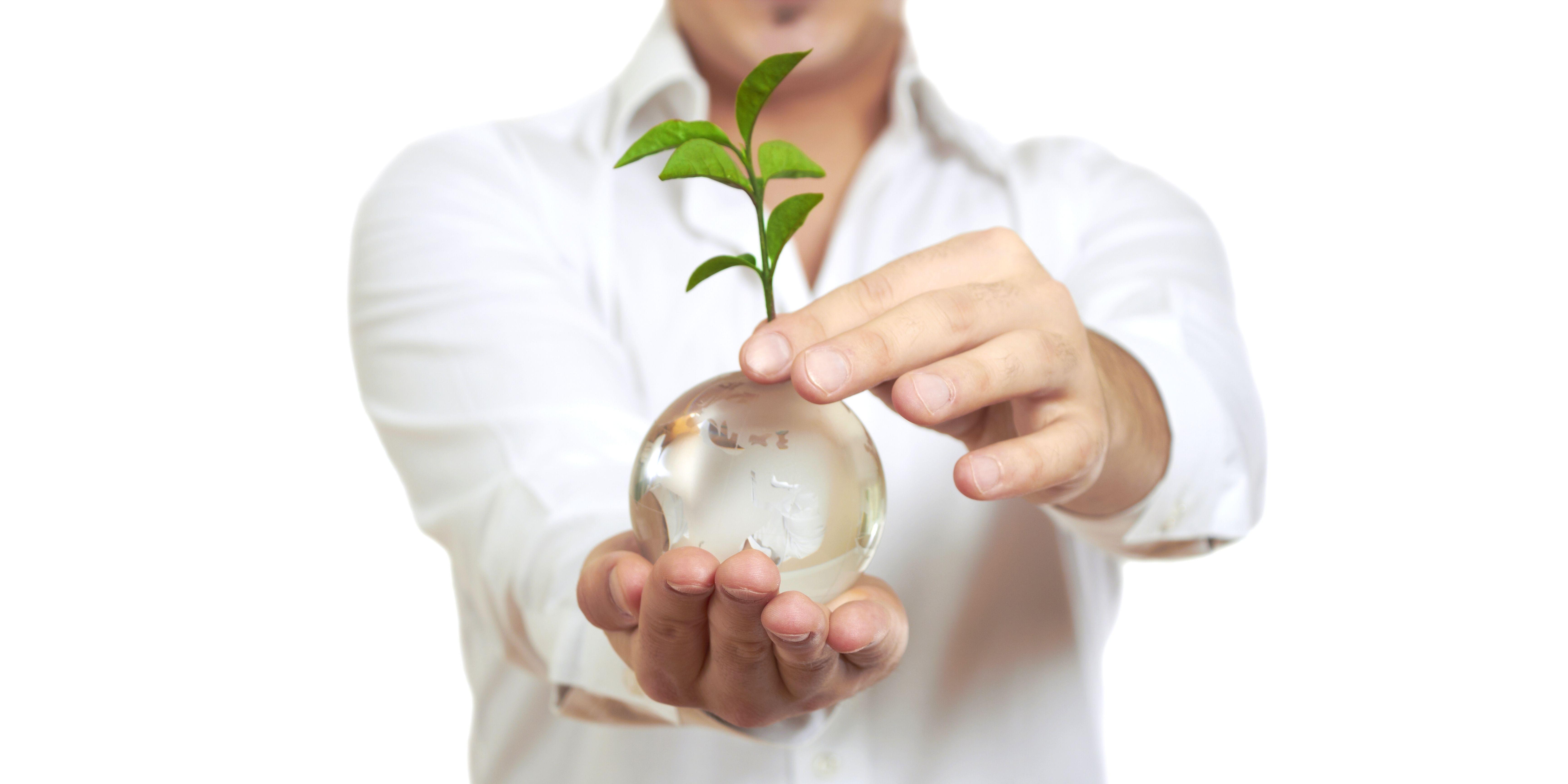 Sustainable living, Langkah Kecil Bagi Perubahan Bumi 5