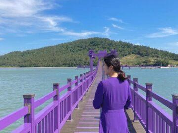 Destinasi Pulau Ungu di Korsel, Surganya Pecinta Warna Ungu 7