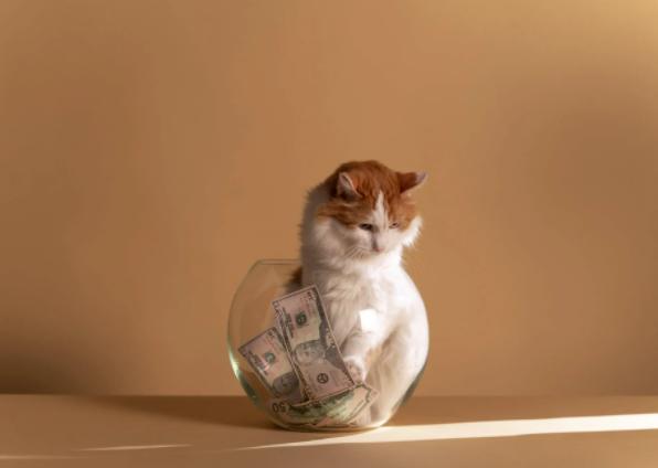 Bonus Akhir Tahun No Minus dengan 5 Persiapan Mulus Finansial 5