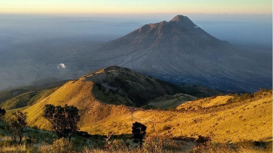 7 Gunung Jawa dengan Sabana Indah 4
