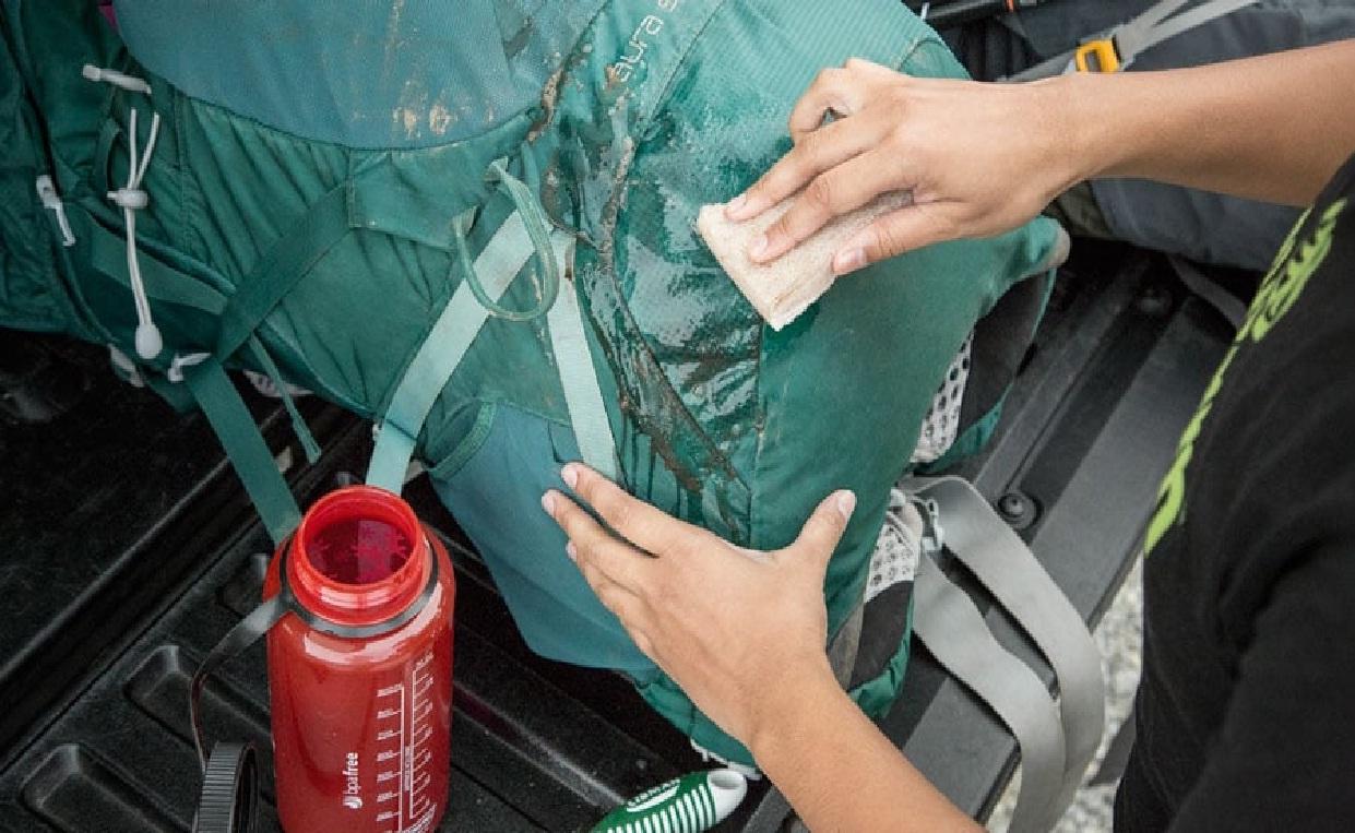 Dahulukan menyikat carriel dengan menggunakan bahan kain halus, sebelum menggunakan sikat gigi atau sikat pakaian. (photo: dok.rei)